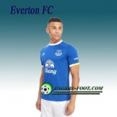 La Collection 2017 Maillot de Everton FC Domicile 2016 2017 Bleu